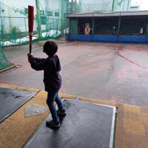 「コロ♀の少女野球日誌」2周年✨