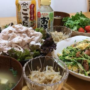 【豆苗とふわふわ炒り卵炒め】豚しゃぶサラダともやしの胡麻和え【簡単レシピ】