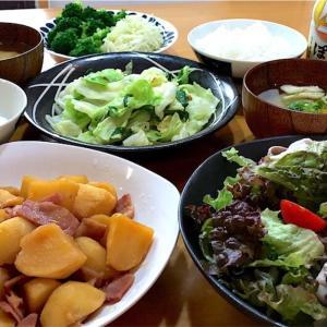【レンジで簡単おかず】じゃがいもとツナの煮物と豚しゃぶサラダ~買ったからにはね~