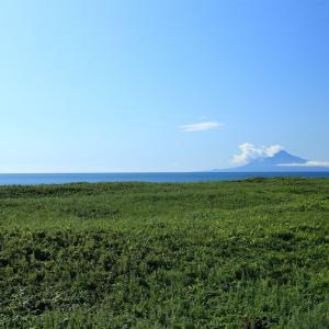 日本最北の国立公園 利尻礼文サロベツ国立公園