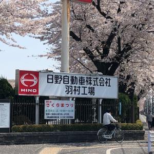 日野自動車桜祭りに行って来た🍡