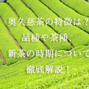 奥久慈茶の特徴は?品種や茶種、新茶の時期について徹底解説!
