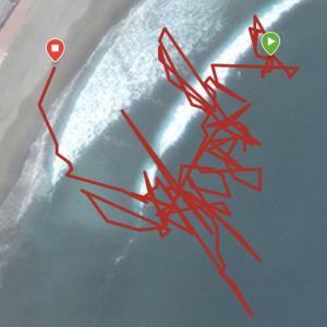 サーフィンでInstinct