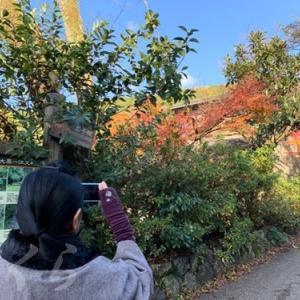 京都~♪大~原、三っ千っ院♪ 【前編】
