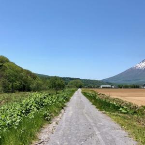 清流・喜茂別川を見ながら蝦夷富士・羊蹄山の自然の雄大さを感じさせる道 〜歩いておきたい1000の道 北海道喜茂別町〜