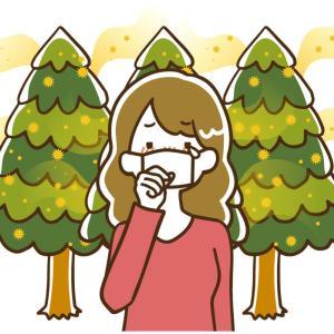 コロナ禍の花粉シーズン コスパの良い市販薬【効果別】