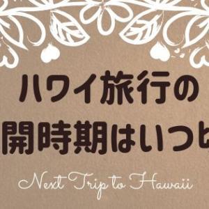 ハワイ観光の再開時期の見込みは?次回の旅行で気をつけたいこと