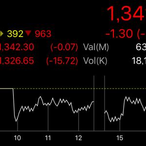 若干の下落。しかし保有銘柄は下がる下がる(´・ω・`)