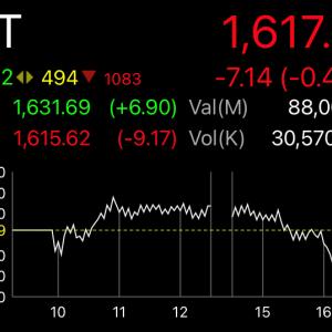 下がって上がって下がっての山なり相場のSET指数