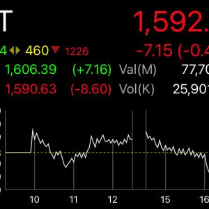 1,600を割り込み混沌としてきたタイ株