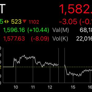 タイ株金曜日は素直に騰がるどころかやっぱり安定の下落