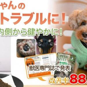 ドクターズDOGサプリ「内側美犬」で愛犬の皮膚トラブルが改善