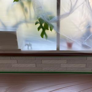 ダイニングの壁を漆喰で塗ってみた その4