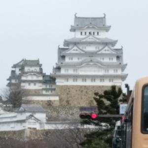今日は、姫路で初雪