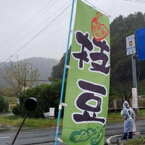 なごみの里の枝豆収穫祭に行って、枝豆収穫してきました(もちろん小糸在来♪)