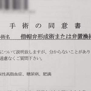 【2019.11入院】③手術内容の説明