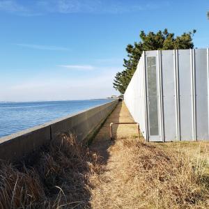 もうすぐ再開発される、鳥居崎海浜公園を見てきました