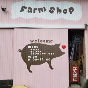 【木更津市唯一の養豚場!】リニューアルオープンした平野養豚場の直売所に行ってきました(木更津市 上望陀)