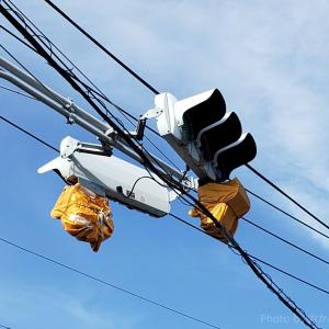 【交通がスムーズになる!】金木橋の金田側の交差点に右折信号機が付くようです