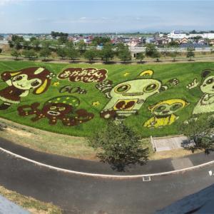 田んぼアートは今年も素晴らしいなり。そして嶽きみシャーベットの衝撃!