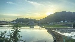 新潟県糸魚川市にふるさと納税で寄附した感想