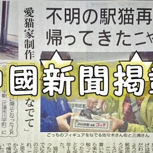 中國新聞2019年12月7日号に川平駅長猫ゴッチ君のインタビューを受け掲載して貰いました(*´▽`*)