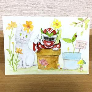 ほとぽけっと商品紹介:ポストカード【ネイチャーレッドA】