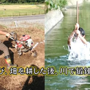 おちび頑張るコーナー:おちび、畑を耕した後、秋の川で鍛錬をする!