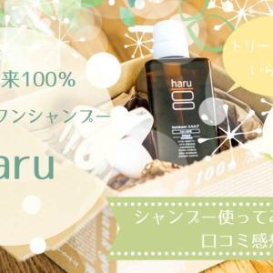 haruの口コミ|kurokamiシャンプー使ってみました。お得に買う方法も紹介