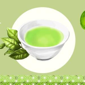 新茶の季節。茶農家直伝の美味しいお茶の淹れ方|温度で効能が変わるんです!