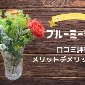 お花のサブスク『ブルーミーライフ』の口コミが悪い?メリットデメリットを考えてみました