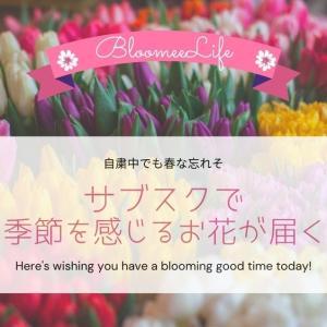 季節を楽しむお花 サブスクで春がきた