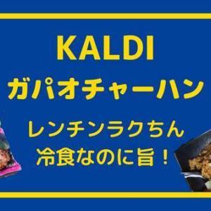 【KALDI】カルディの冷食のガパオチャーハン冷食なのにうまー!