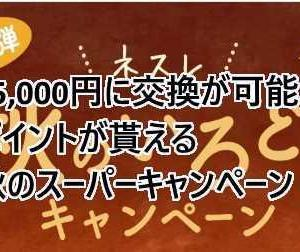 ネスレの商品65,000円分が実質負担10,000円で購入&35,000円相当のポイントが貰えるやばやばのキャンペーン