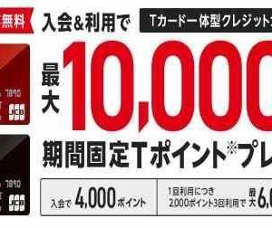 ペイペイ還元率4%! Yahoo! JAPANカードを作って14,600円相当のお小遣い稼ぎ!