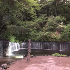 旅の思い出 白糸の滝プロジェクションマッピング ( *´艸`)
