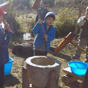 自然農田んぼの収穫祭