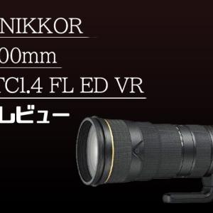 【AF-S NIKKOR 180-400mm f/4E TC1.4 FL ED VR】Nikon最高級のズームレンズ、その特徴とレビュー!