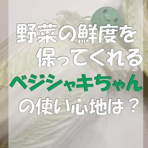 野菜の鮮度を保つベジシャキちゃんを使ってみた:野菜のおすすめ保存方法って?