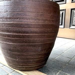 憧れのメダカ鉢を、植木鉢で作る!! ①