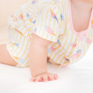 生後7ヶ月娘の成長に驚き!ずりばいが得意になってきた娘の生態