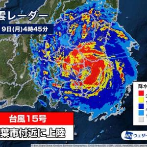 台風直撃!〜対策と結果〜