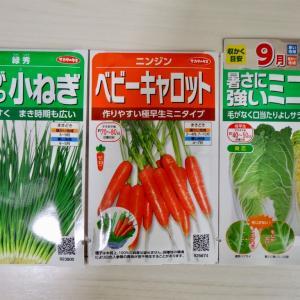 葉ネギ・ミニ人参・ミニ白菜の種まき