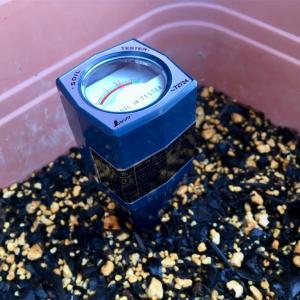 pH測定器で土の健康診断