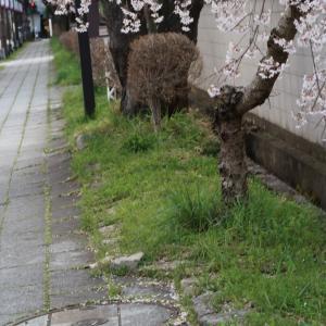 エア観光 写真で巡る会津若松鶴ヶ城✨北出丸大通りから入城編