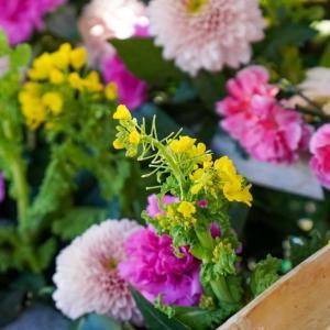 春の花手水が可愛らしい、郡山市(福島)の豊景神社を参拝してきました!