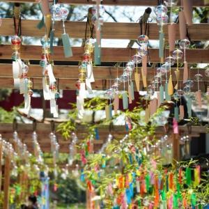会津美里町の伊佐須美神社(いさすみじんじゃ)を参拝して、風鈴の音色に癒されてきた..!