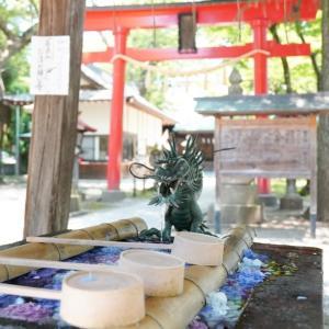 【夏詣】会津若松市の歴史ある神社、蚕養国神社(こがいくにじんじゃ)を参拝しました!