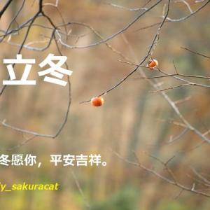 """【 11月8日は """"立冬"""" です 】"""