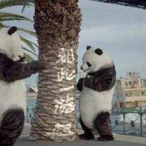 動画「パンダが教える旅行マナー」